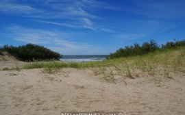 Cariló; Carilo; Nelmitravel; Coast Argentina; What to do in Carilo; Cariló Argentina;