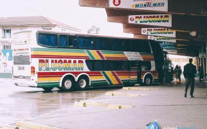 Plusmar Bus; Plusmar Argentina; Long distance bus Argentina; Buses to Pinamar; Nelmitravel