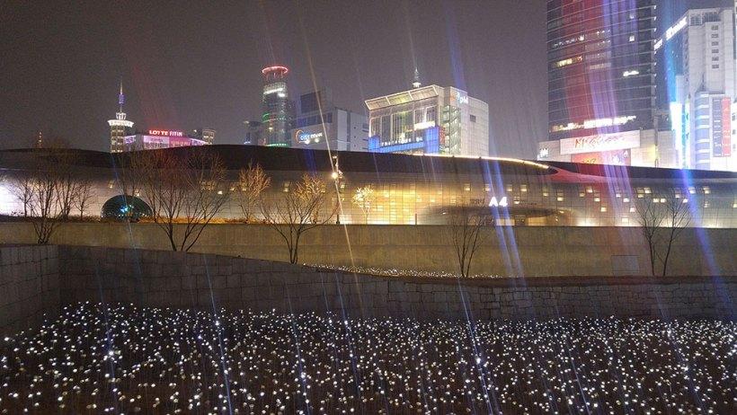 Dongdaemun Design Plaza's LED Flower Garden at night