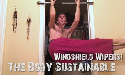 Windshield Wipers! Advanced Core and Upper Body Exercise