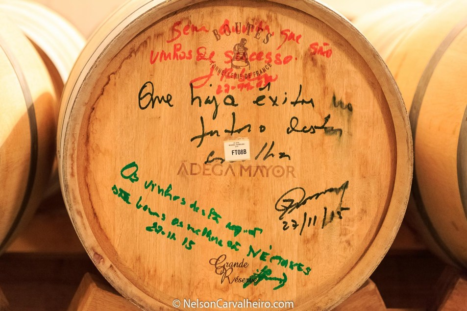 Nelson_Carvalheiro_Alentejo_Wine_Travel_Guide_Adega_Mayor-5