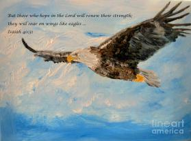 soar-on-wings-like-eagles-amanda-dinan