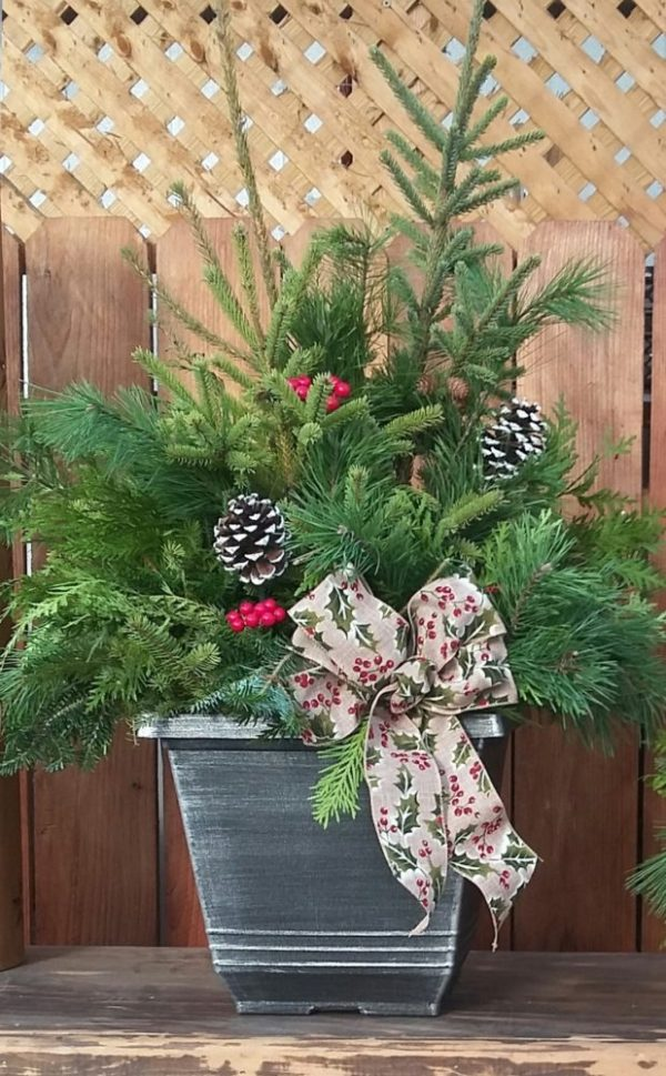 Spruce Tip Arrangement 4