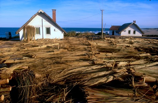 Uruguay, Rocha, Punta del Diablo