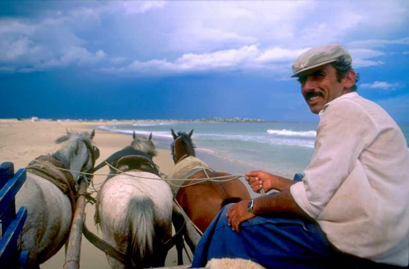 Uruguay, Cabo Polonio, Paso por la playa, animal