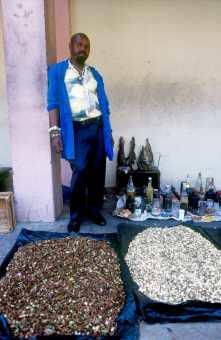Sudáfrica, Natal, Durban, mercado indio, Sangoma, medicina espiritual, retrato