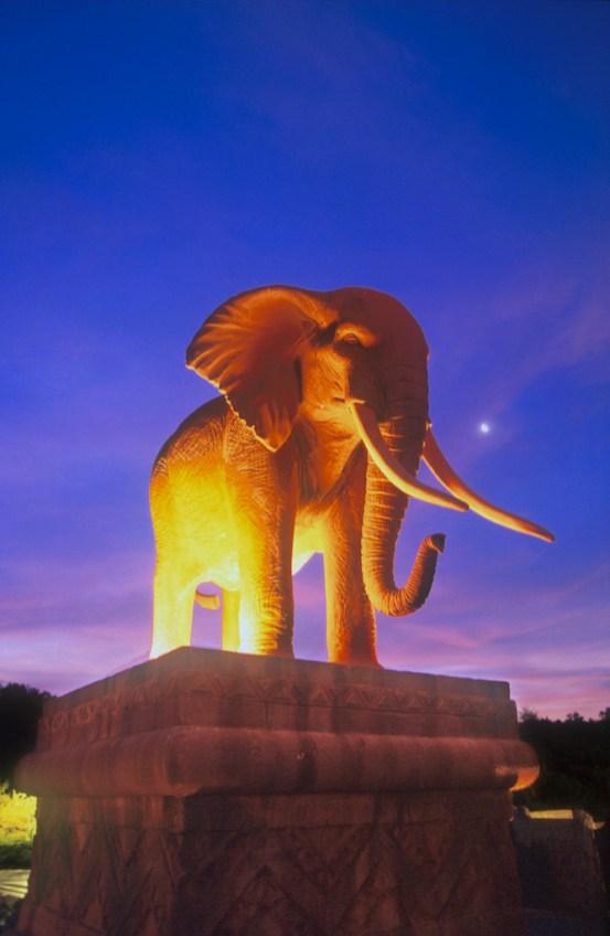 Sudáfrica, Bophuthatswana, Sun City, Hotel Sun City, animal