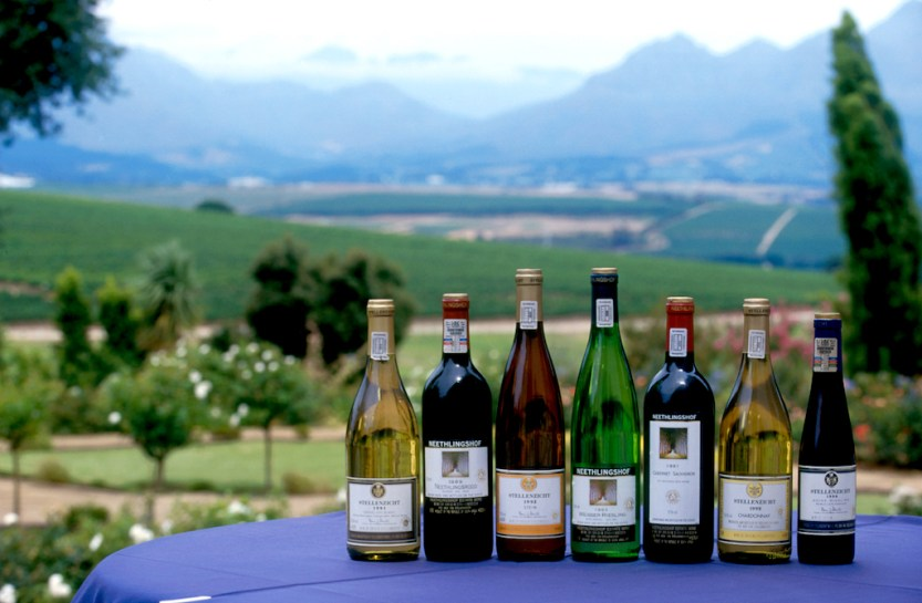 Sudáfrica, El Cabo, Stellenbosch, zona vitivinícola, vinos de Sudáfrica, Bodega Neethlingshof