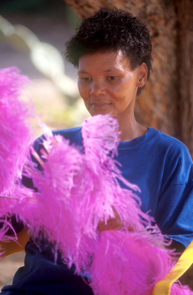 Sudáfrica, Karoo, Oudtshoorn, granja de Avestruz Highgate, plumas para el espectáculo