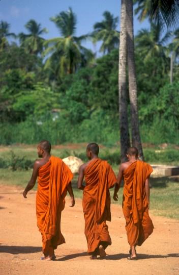 Sri Lanka, Mihntale, Roca del Templo, monjes budistas