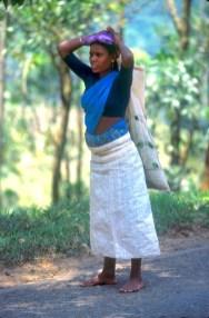 Sri Lanka, N'elya, cosecha del Té, trabajadora, retrato, trabajo