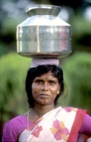 India, Mysore, carretera, el trabajo de cada mañana, agua, retrato