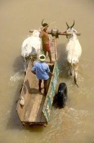 India, Mysore, carretera, el trabajo de sacar arena del río, construcción