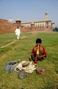 India, Uttar Pradesh, Delhi, edificio presidencial, encantador de serpientes, retrato