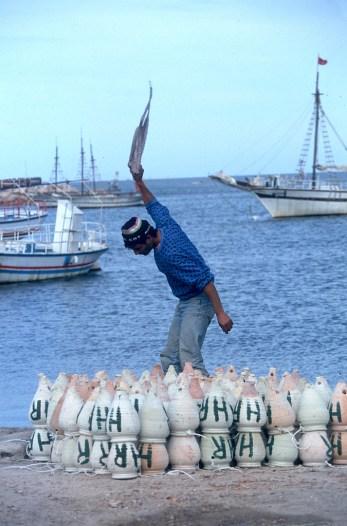 Túnez, Industria, Pescador, Pulpo., animal