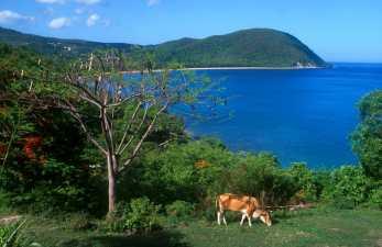 Francia, Antillas Isla Guadalupe la Grande Anse