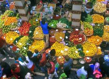 Portugal, Madeira, Funchal, Mercado do Labradores