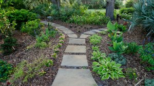 Pathways, Entryways, Dry Laid Mortared Path Tampa, FL