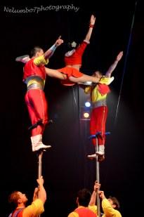 Circus act 8