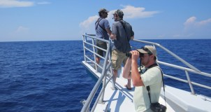 Mike Lanzone, Bob Fogg, and John Puschock scan the ocean! (Photo by Andy McGann)