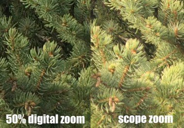 Comparison of detail using digital zoom on iPhone 5s at 50% (left) versus similar optical zoom level (right) on Zeiss Diascope T*FL 85. Cropped to show detail. (Drew Weber)