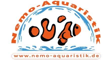 Nemo-Aquaristik Clownfischzucht Deutschland