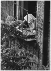 | Greenwich Village, New York (woman reading in fire escape window), 1963 |