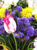 Чудесные махровые тюльпаны выращивает и приносит Ира Куликовская.