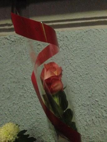 Пламенная роза
