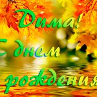 Дима! С днем рождения!