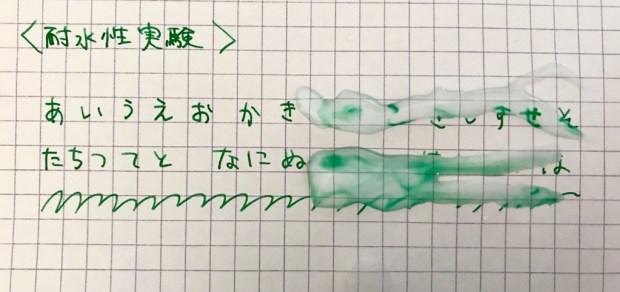 プレピーグリーンの耐水実験
