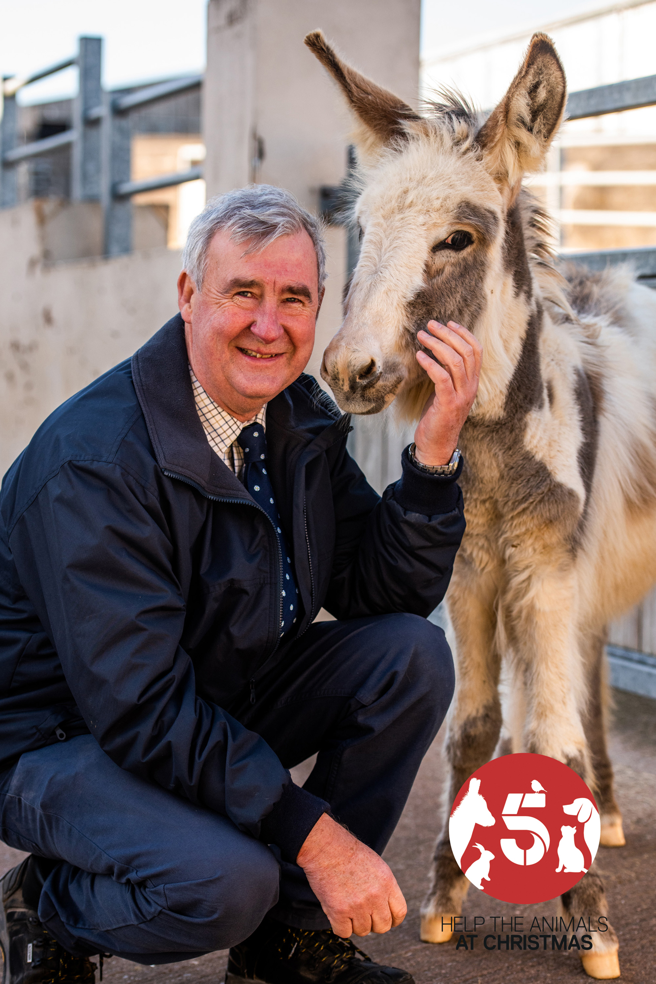 Channel 5 Launches Help The Animals At Christmas The Nen North