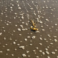 'sand scape patterns' — Nena Black