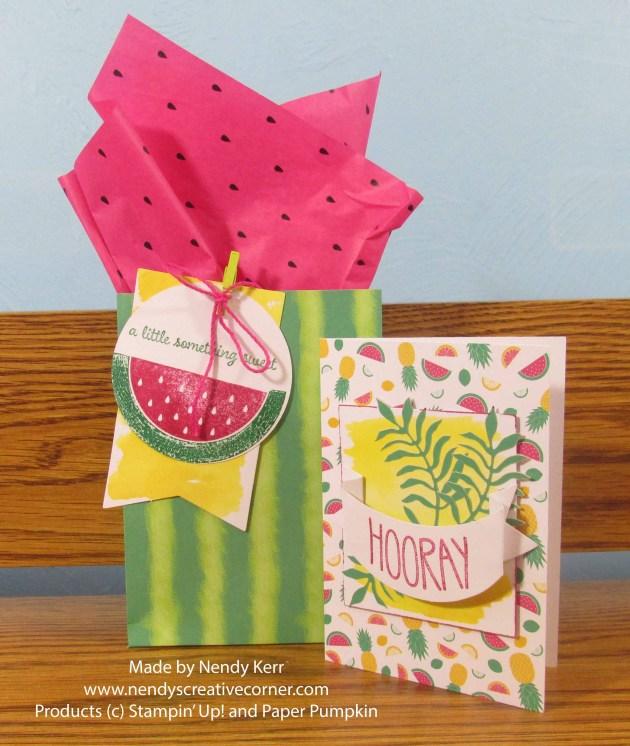 June Paper Pumpkin Card and Gift Bag