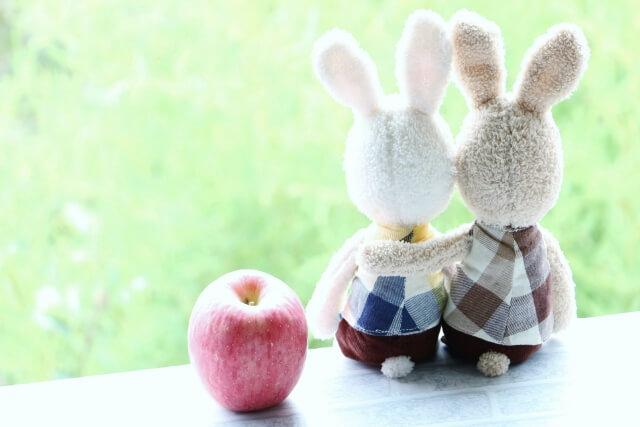 ウサギの夫婦