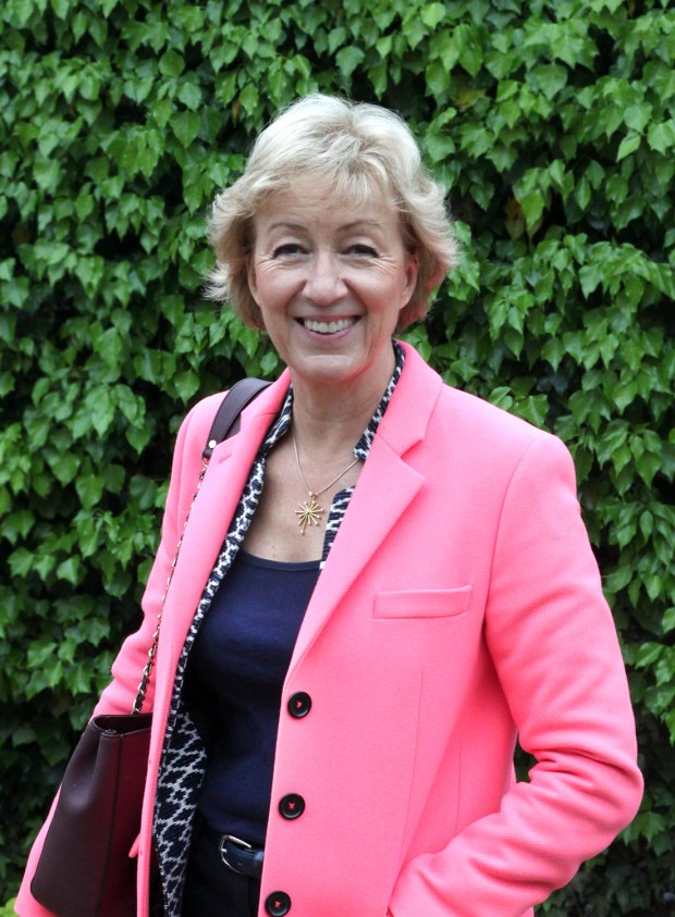 The RT Hon Andrea Leadsom MP (1)
