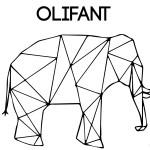 olifant-01