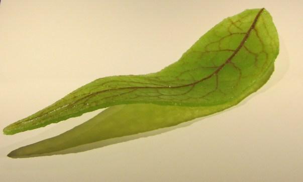 Pate de verre blad