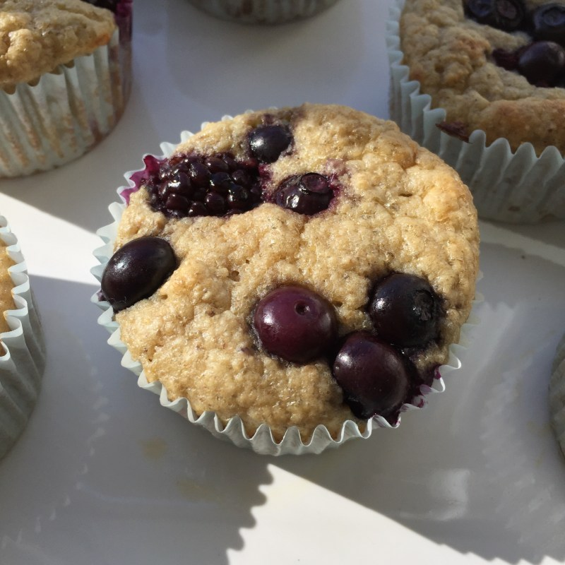 Guilt Free Oatmeal Blueberry Muffins