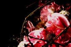 flower040