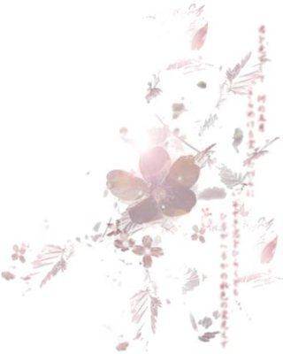 淡い花の壁紙