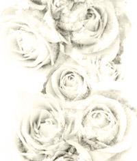淡い風合いの薔薇(4パターン)