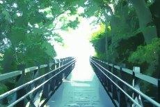 outdoor-scenery-045
