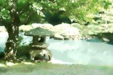outdoor-scenery-073