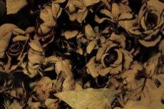 repeat-flower052