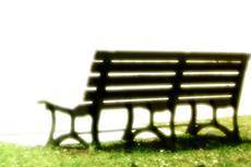 野原と無人のベンチ