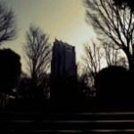 公園とビルの写真素材