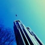 ビルと飛ぶカラスの写真素材