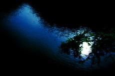 水面に映る月の写真素材