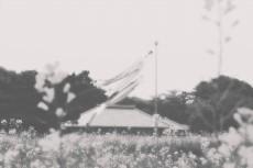 scenery316-3